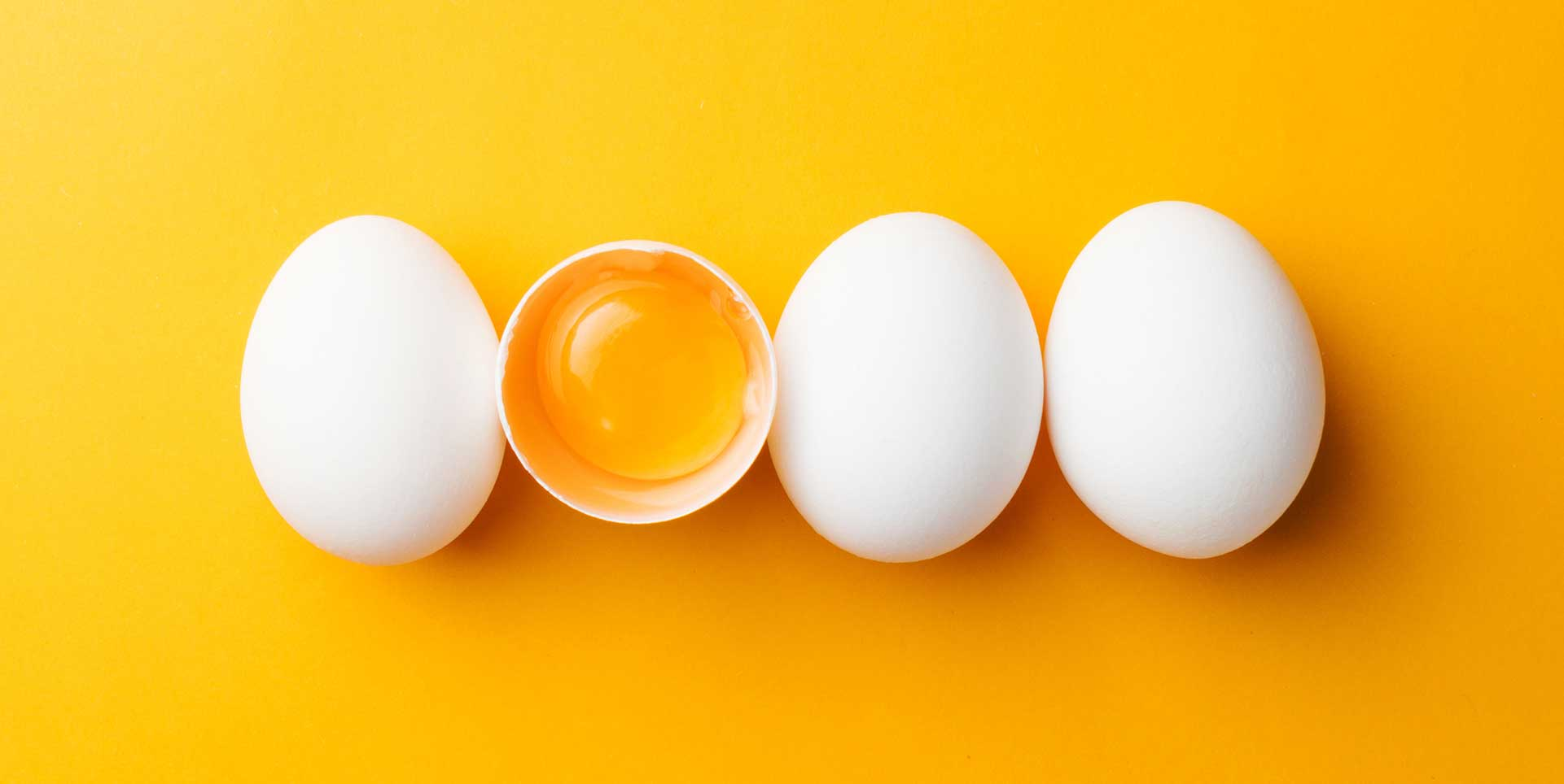 Four eggs in a row against a yellow-orange background