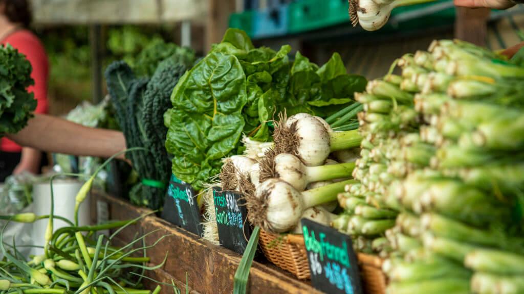 Farm fresh veggies at the UBC Farm Market.